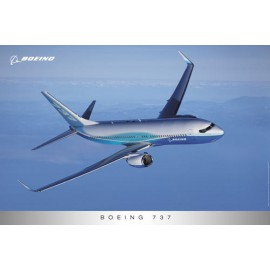737 In Flight Poster